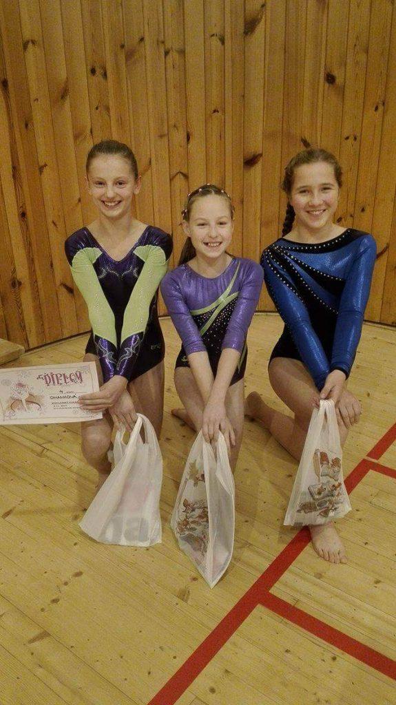 sport_gymnastika_sezimovo-usti-1