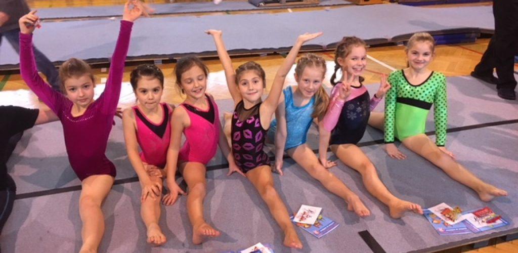 Gymnastické úspěchy