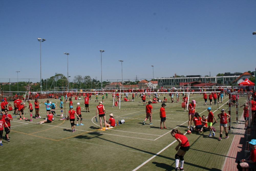 sport_volejbal