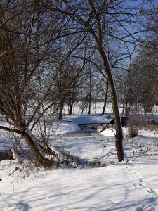 zasnezene-meandry-potoka