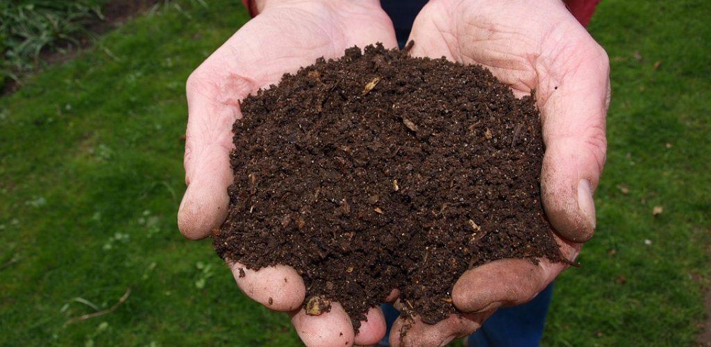 Přijďte si pro kompost zdarma